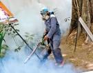 Battle against dengue continues as the disease rages