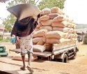 Few mighty millers accused  of rigging rice market