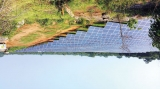 Hayleys unveils Lanka's largest capacity solar power plant in Welikande