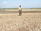 Farmers demand Rs 50,000 per acre for crop damage
