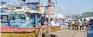 Photo focus: Dengue spreads