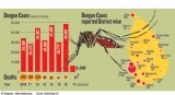 Health Ministry to recruit  1,500  'field assistants' to tackle increasing cases of dengue