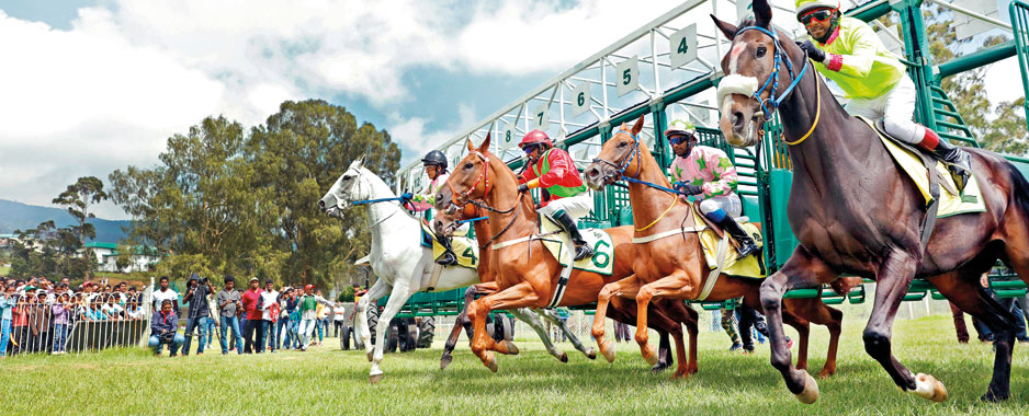 RTC at full stretch to make  SL a Horse-racing hub
