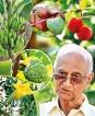 Rice-free diet helps iron man Ranjit Seneviratne beat the blues
