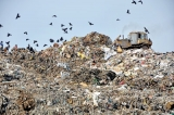 Colombo garbage mountain dumped on the desks of leaders