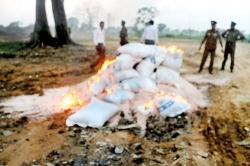 Rice not boiled but set ablaze