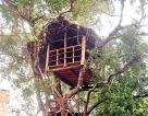 Amaara Forest Hotel Sigiriya and beyond