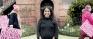 A Lankan woman in the White House: Krishanti Vignarajah