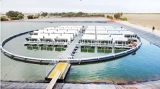Floating solar electric systems