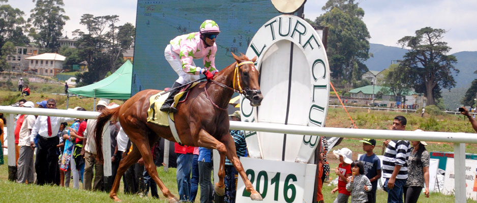 Alcazaba in line for bigger deeds