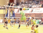 Why shouldn't Volleyball be the National Sport?