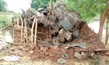 Human-elephant conflict escalates in Hambantota