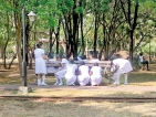Mid-day meal on Midwives Day on Park bench