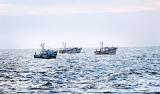 IUU fishing by Tamil Nadu trawlers:  Lankan fishermen cast net on Modi