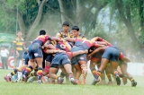 Royal prove its all a team game