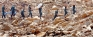 Unpreparedness reigned as lives, properties were destroyed