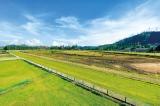 Huge stakes at the proposed Nuwara Eliya Training centre