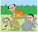 The Tortoise, the Korawakka – and the Depath Naya