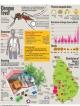 War footing against dengue