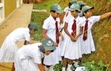 Environmental leaders of Kirama cleaned their school premises