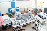 The battle to cope with dengue