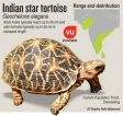 Tortoise catch sheds light on another front in  criminal wildlife trade