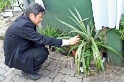 International expert joins battle against dengue