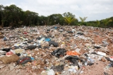 Dumping garbage on Muthurajawela wetlands adversely impacts environment