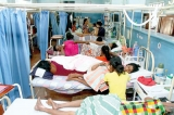 Dengue infections and deaths stretch  Lanka to the limits