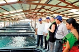 EU and UNDP officials visit  development projects in Batticaloa