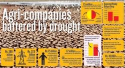 Agri-companies battered by drought