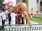 Tamil Nadu smugglers make mockery of Glyphosate ban — 2,000 kilos busted