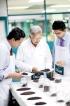 Retail discount culture worries top tea brand, Dilmah