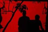 Beware of shadowy predators