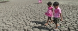 Delay in inter-monsoonal downpour prolongs agony of drought-hit farmers