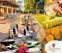 Flavours of Jaffna at Earl's Regency