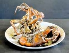 For a taste of seafood specials in Galle