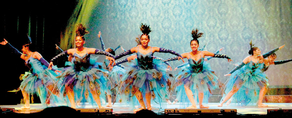 A show of talent, colour and exquisite dance