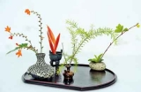 Ikebana in  full bloom