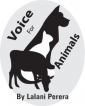 Purr yes to kindness and growl no to cruelty: Remember, vote to protect animals and trees
