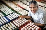 Sri Lanka's Mr. Egg