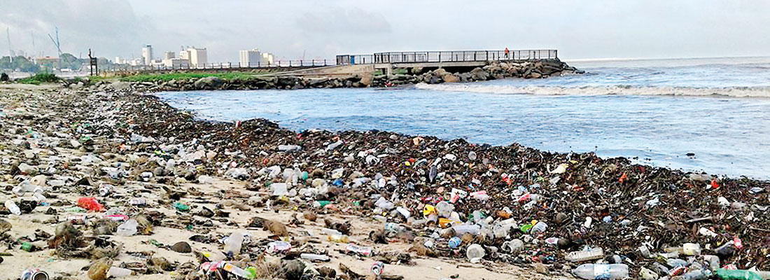 Sea of trash: Inland and overseas garbage washes up on Lanka's beaches