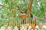 Scholar monk's erudite voice of 'Satyam Shivam Sundaram' stilled