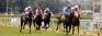 RTC aiming to increase racedays