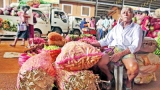 Veggie glut at Dambulla plunges prices as low as they can go
