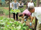 Habarana resort introduces sustainable farming Model in dry zone
