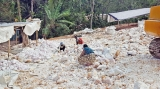 Troubled villagers question Matale quarry