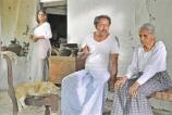 Birthday gift  to Father of Lankan cinema