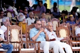 Heard in the Mustang Tent:  Royal-Thomian Cricket Match