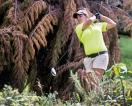 NEGC to host International Inter-Club Golf Tourney on March 31